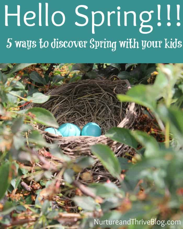 Five ways to discover Spring with your kids and a nature walk printable!