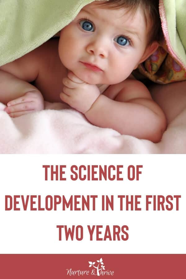 growth and development in toddlers