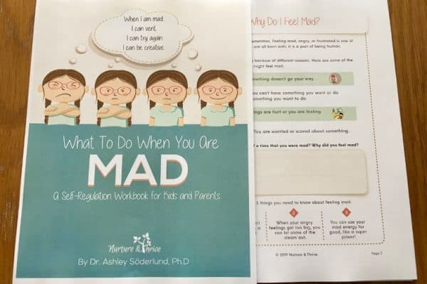 What to Do When You Are Mad: A Self-Regulation Workbook for Kids and Their Parents 3