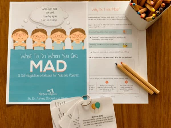 What to Do When You Are Mad: A Self-Regulation Workbook for Kids and Their Parents 5