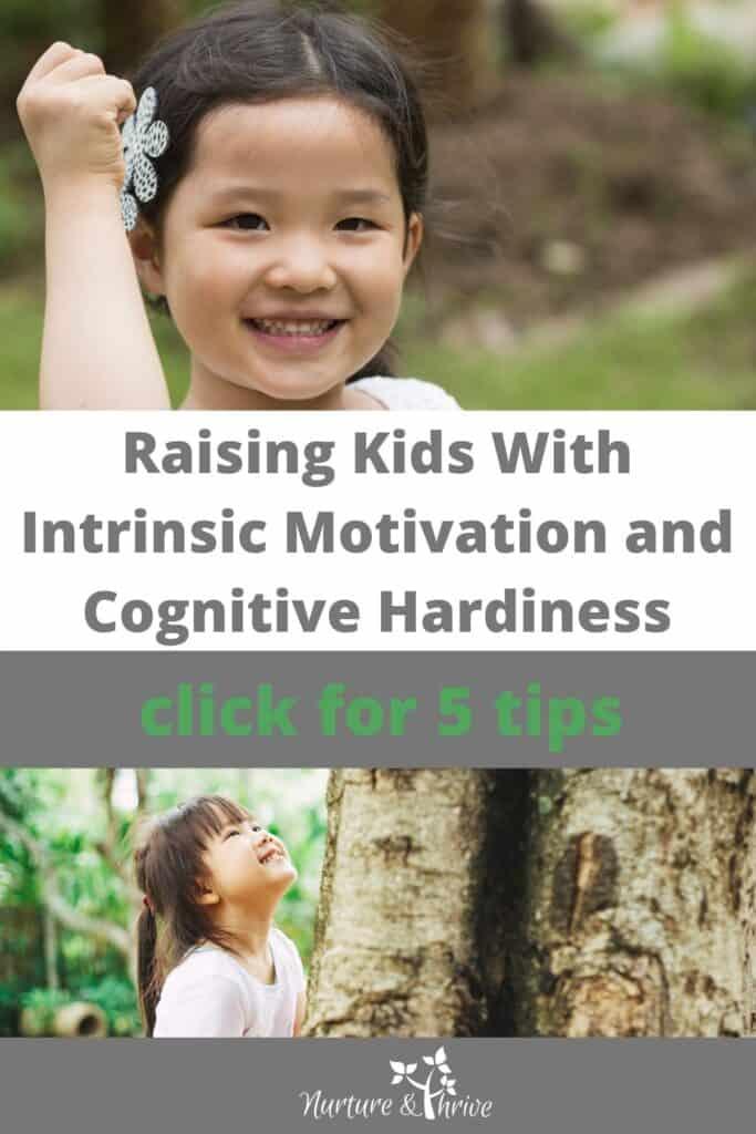 high intrinsic motivation