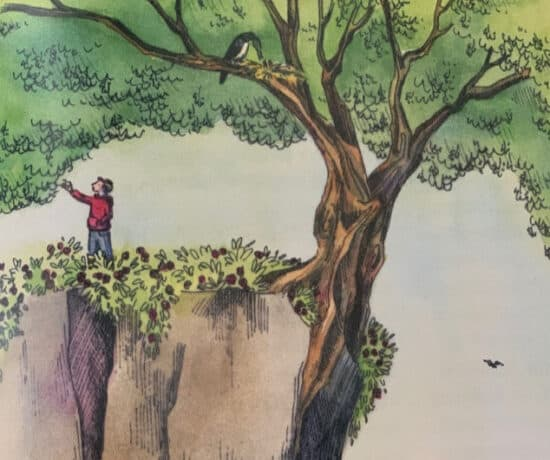 books that build resilience in children