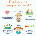 How to Parent Your Strong-Willed Child According to Science: Understanding Their Temperament 10