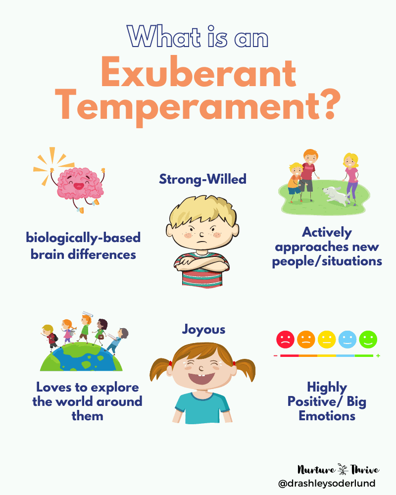 strong willed temperament - the exuberant child