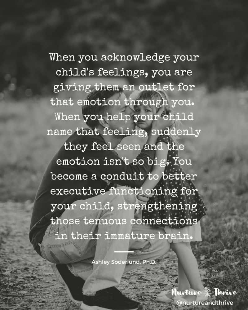 Two-Step Mindful Emotions System for tantrums, meltdowns, and big emotions.