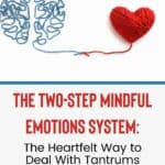 The Heartfelt Way to Deal With Tantrums and Meltdowns: The Two-Step Mindful Emotions System 14