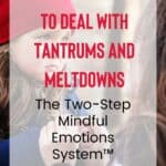 The Heartfelt Way to Deal With Tantrums and Meltdowns: The Two-Step Mindful Emotions System 16
