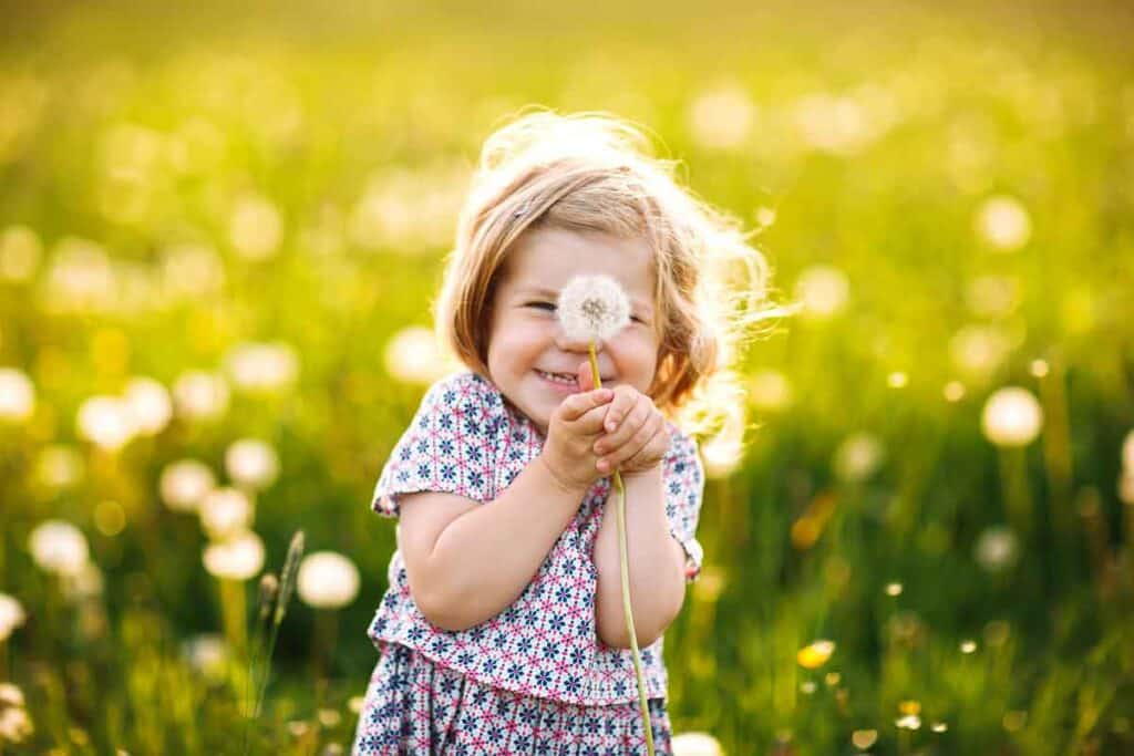 2 year old girl smiling with a dandelion.